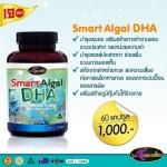 Auswelllife DHA Smart Algal บำรุงสมองและสายตา 1 กระปุก