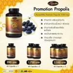 Auswelllife Propolis 1000 mg ลดภุมิแพ้ ลดสิว 1 กระปุก